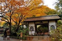 鎌倉紅葉スポット2014:人気の北鎌倉・長谷周辺コース東慶寺
