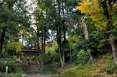 鎌倉紅葉スポット2014:人気の北鎌倉・長谷周辺コース浄智寺