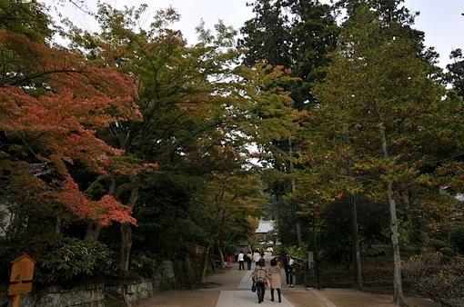 北鎌倉円覚寺の紅葉2014境内