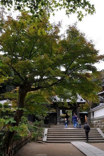 北鎌倉円覚寺の紅葉2014舎利殿前