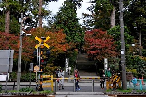 北鎌倉円覚寺の紅葉2014総門前の横須賀線