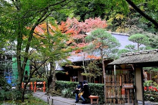 北鎌倉紅葉散策チェック2014明月院月笑軒