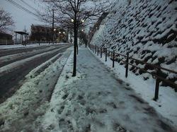 藤沢の初雪 善行の坂
