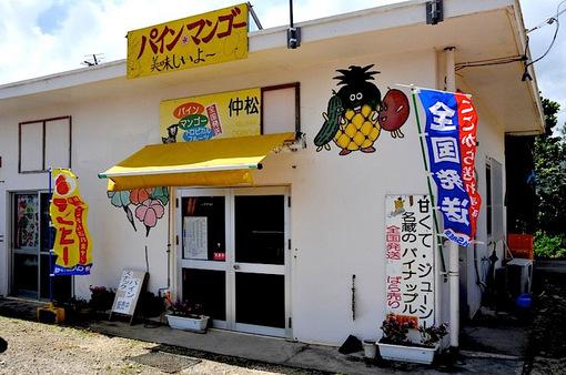 湘南から沖縄八重山旅行石垣島のパイン&マンゴーの中松商店